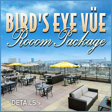 Birds Eye Vue